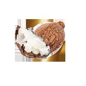 naturikke kokos