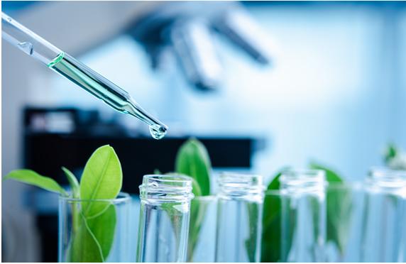 świat naturikke badania